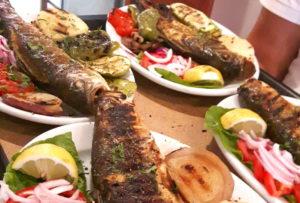 Corfu Seaside Restaurant Dandidis